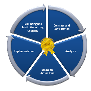 Systems Process Model